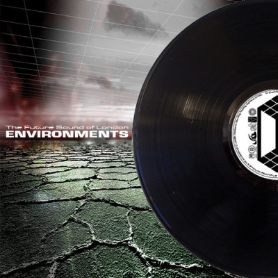 Environments Vinyl Edition